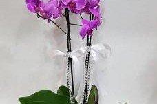 Anneler Gününe Özel Hazırlanan Çiçekler