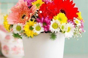 Burçlara Göre Çiçekler