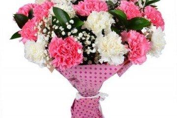Kütahya Üniversitesi Çiçek Çeşitleri