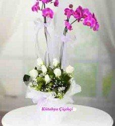 Çift Dal Beyaz Pembe Güller