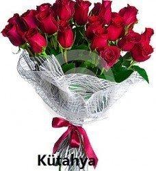 Güzel Kırmızı Güller